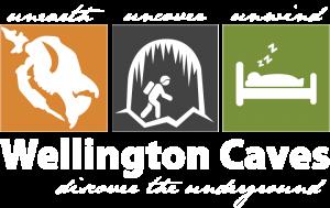 Wellington Caves Logo development