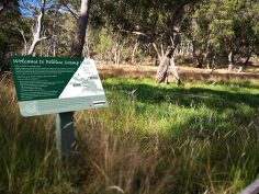 Walking Track Signs, Barrington Tops