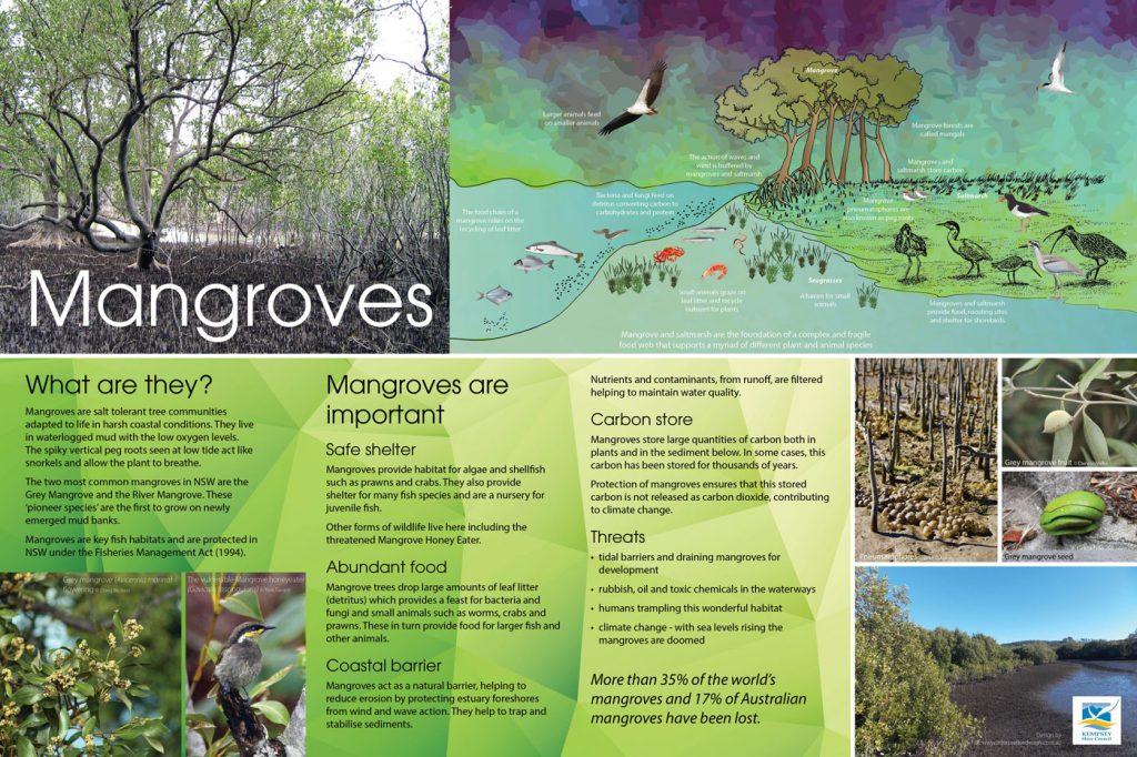 Mangrove environmental sign