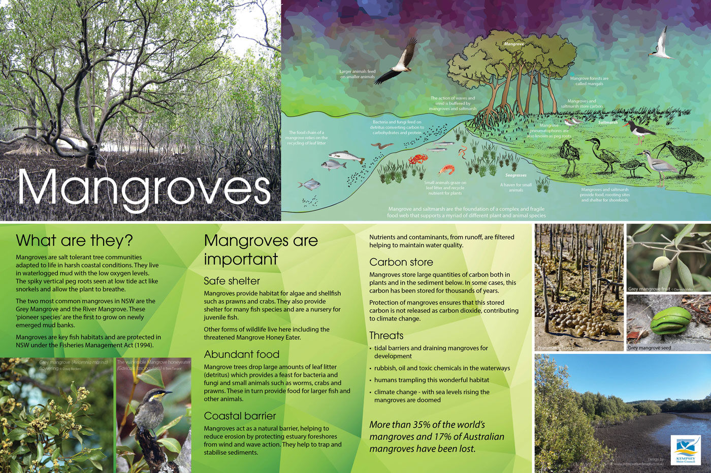 Mangrove environmental sign