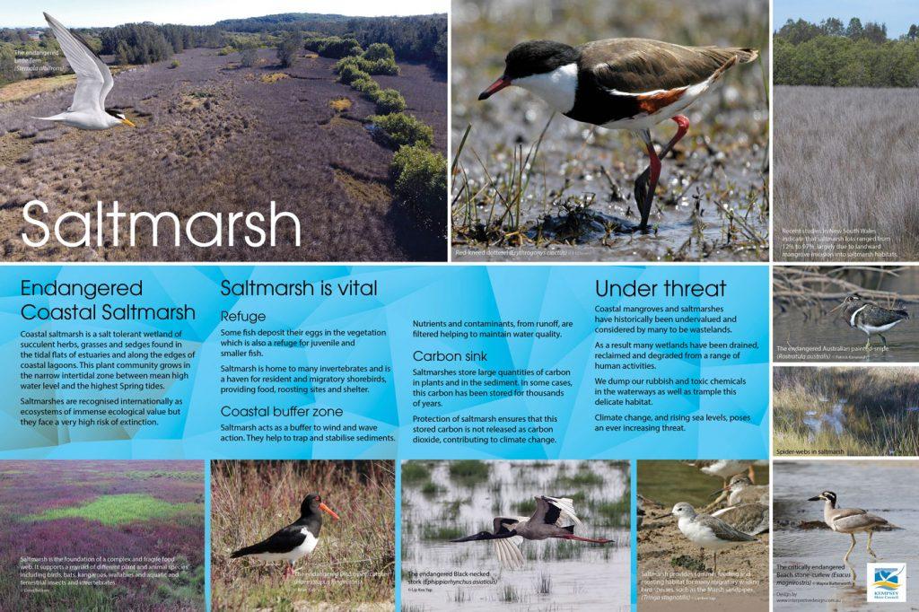 Saltmarsh environmental sign