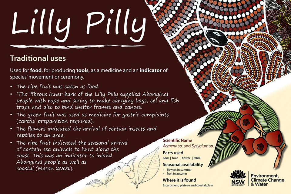 Indigenous Interpretive Signs, Nimbin Rocks