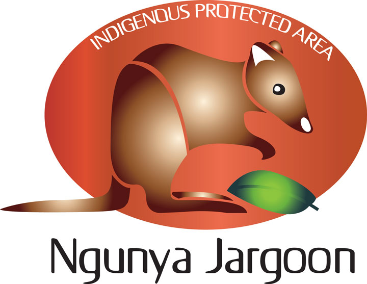 Aboriginal Logo Design
