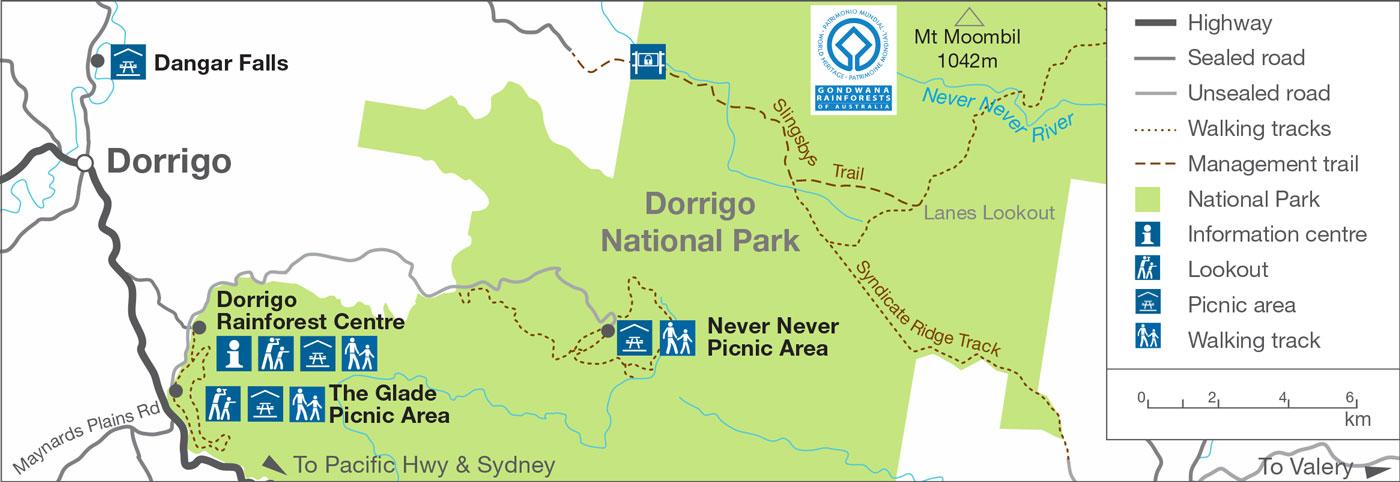 Dorrigo shape file map