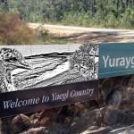Yuraygir Major Park Entry Graphic Design