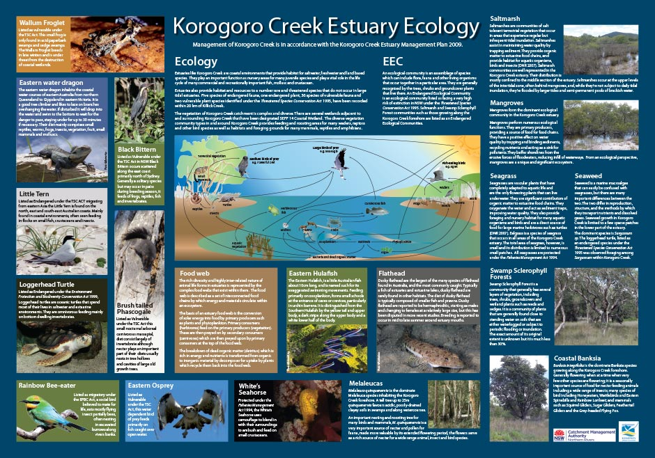 Environmental signage - Korogo Creek, Kempsey
