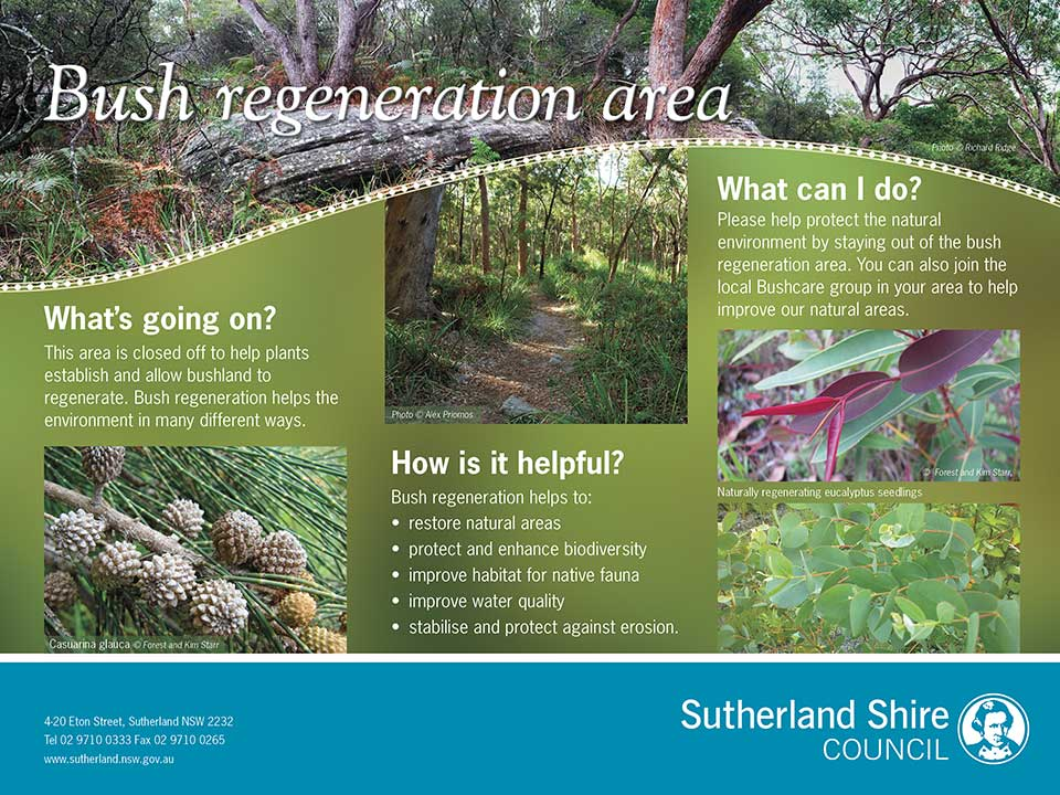 Bush Regeneration interpretive sign