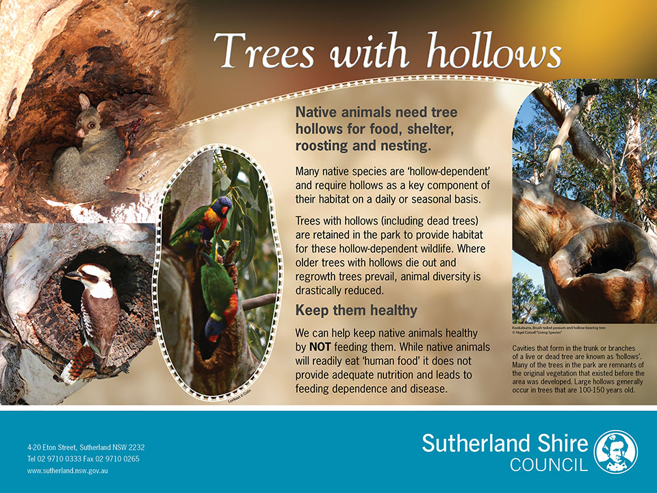 Trees with Hollows environmental signage