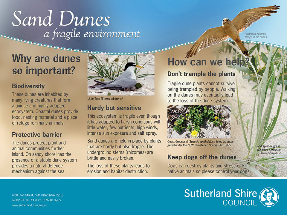 Sand Dunes environmental interpretive signage