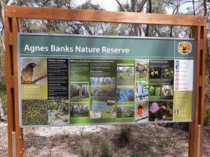 Agnes Banks NR Tourist Sign