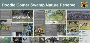 Doodle Comer Swamp information sign