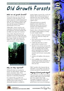 Old Growth Forests fact sheet