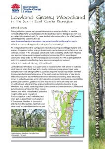Lowland Grassy Woodland - EEC identification guidelines