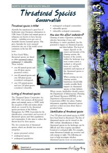 Threatened Species fact sheet