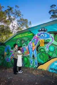 Spray art mural of Gumgali the black goanna