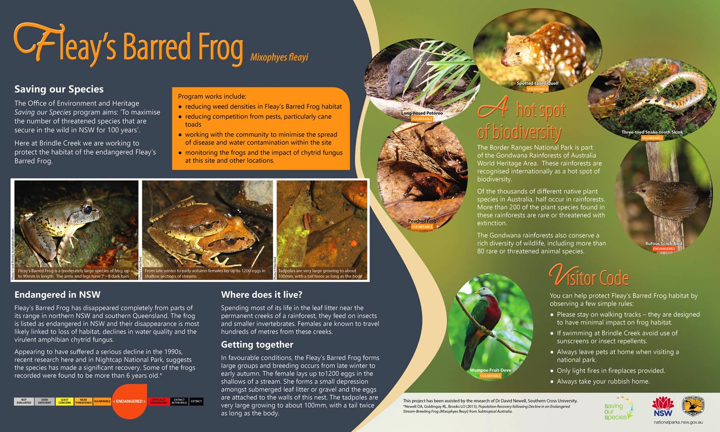 Saving our Species - Fleay's Barred Frog interpretive sign