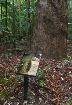 Interpretive Signage Design, Yarriabini National Park