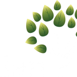 Callan Park logo