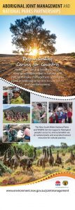 Aboriginal Joint Mgmt poster - connections